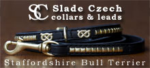 Collars and leads for Staffordshire Bull Terriers